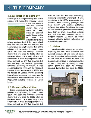 0000094375 Word Template - Page 3