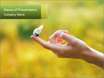 Butterfly PowerPoint Template - Slide 1
