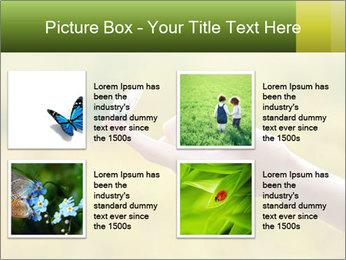 Butterfly PowerPoint Template - Slide 14
