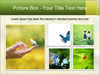 Butterfly PowerPoint Template - Slide 19