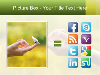 Butterfly PowerPoint Template - Slide 21