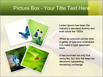 Butterfly PowerPoint Template - Slide 23
