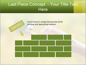 Butterfly PowerPoint Template - Slide 46