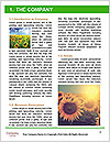 0000094389 Word Template - Page 3
