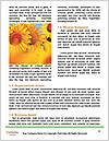 0000094389 Word Template - Page 4
