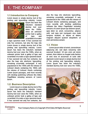0000094390 Word Template - Page 3