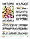 0000094392 Word Templates - Page 4