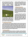 0000094398 Word Templates - Page 4