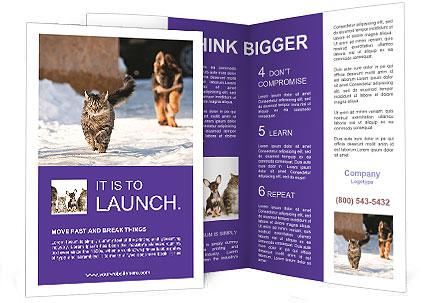 0000094421 Brochure Template