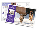 0000094421 Postcard Templates
