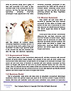0000094421 Word Template - Page 4