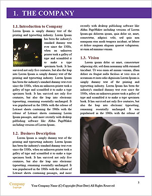 0000094422 Word Template - Page 3