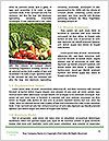 0000094432 Word Templates - Page 4