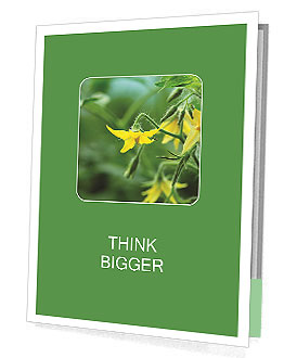 0000094434 Presentation Folder