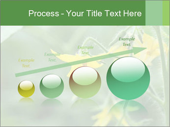 Growing tomatoes PowerPoint Templates - Slide 87