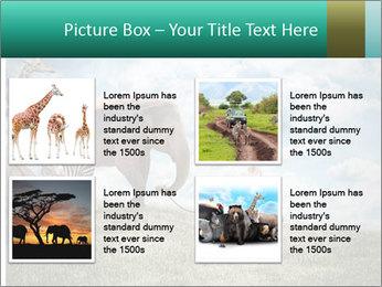 Big elephant PowerPoint Template - Slide 14
