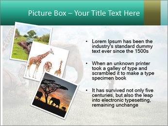 Big elephant PowerPoint Template - Slide 17