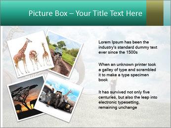 Big elephant PowerPoint Template - Slide 23