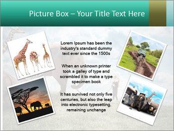 Big elephant PowerPoint Template - Slide 24