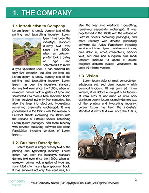 0000094435 Word Template - Page 3