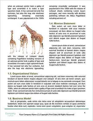 0000094435 Word Template - Page 4