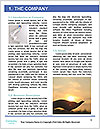 0000094438 Word Template - Page 3