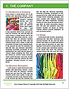 0000094446 Word Template - Page 3