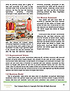 0000094446 Word Template - Page 4