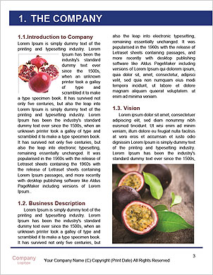 0000094456 Word Template - Page 3