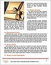 0000094459 Word Templates - Page 4
