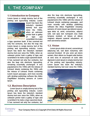 0000094460 Word Template - Page 3