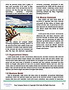 0000094460 Word Templates - Page 4