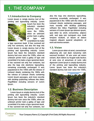 0000094461 Word Template - Page 3