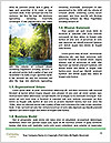 0000094461 Word Template - Page 4
