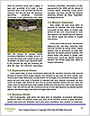 0000094475 Word Templates - Page 4