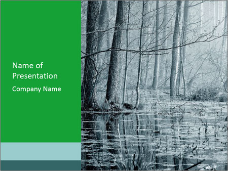 Swamp in fog PowerPoint Template
