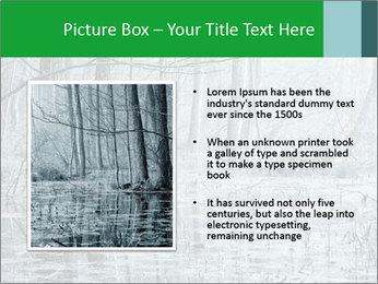 Swamp in fog PowerPoint Template - Slide 13