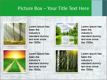 Swamp in fog PowerPoint Template - Slide 14