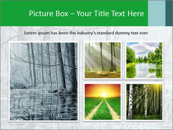 Swamp in fog PowerPoint Template - Slide 19