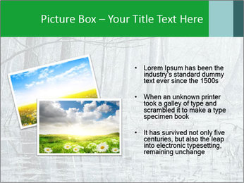 Swamp in fog PowerPoint Template - Slide 20