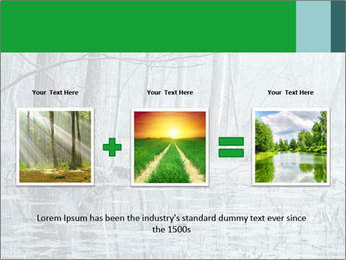 Swamp in fog PowerPoint Template - Slide 22