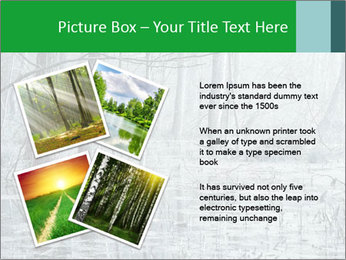 Swamp in fog PowerPoint Template - Slide 23