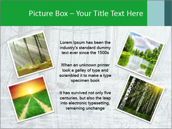 Swamp in fog PowerPoint Template - Slide 24