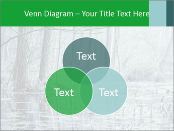 Swamp in fog PowerPoint Template - Slide 33