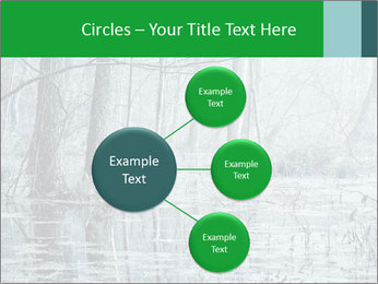 Swamp in fog PowerPoint Template - Slide 79