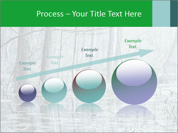 Swamp in fog PowerPoint Template - Slide 87