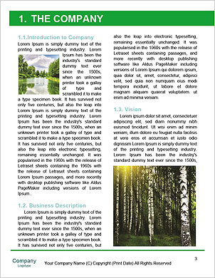 0000094482 Word Template - Page 3