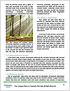 0000094482 Word Templates - Page 4