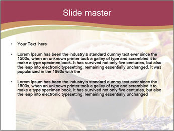 Masage body oil PowerPoint Templates - Slide 2
