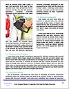 0000094498 Word Template - Page 4